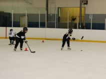 Hockey Skills Republic & Ultimate Power Skating Skills Academy